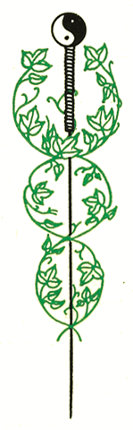 Acupuncture Center of Chico logo